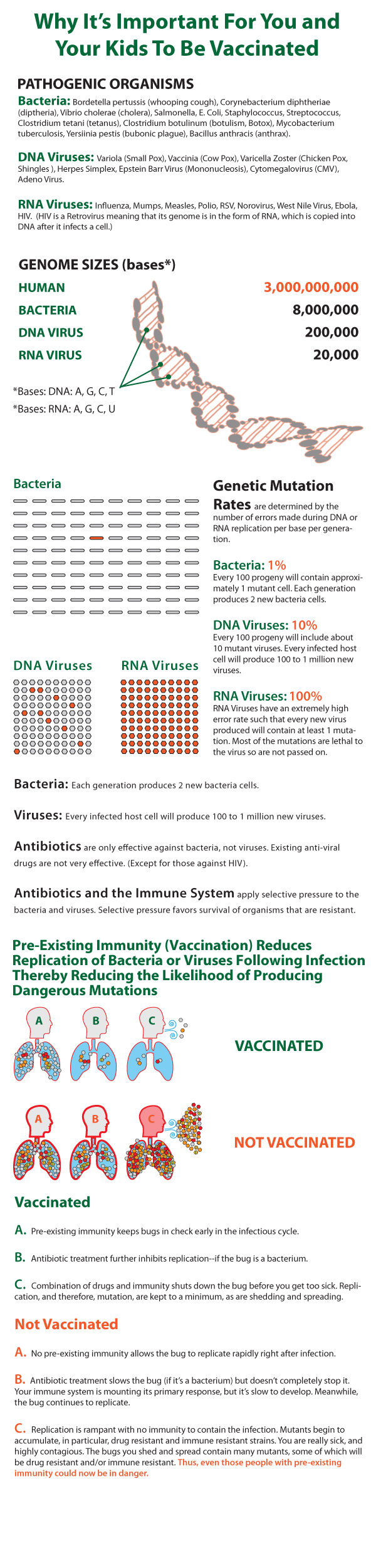 Vaccine-Effect-Infographic-Final